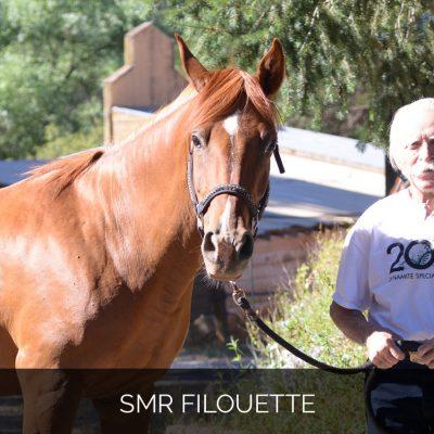 SMR Filouette