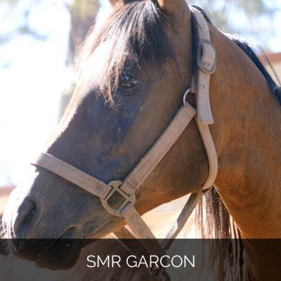 SMR Garcon