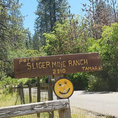 Sliger Mine Ranch7