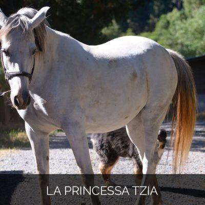 La Princessa Tzia